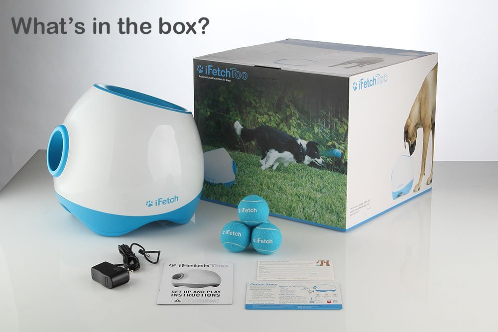 iFetch gift for dog owners