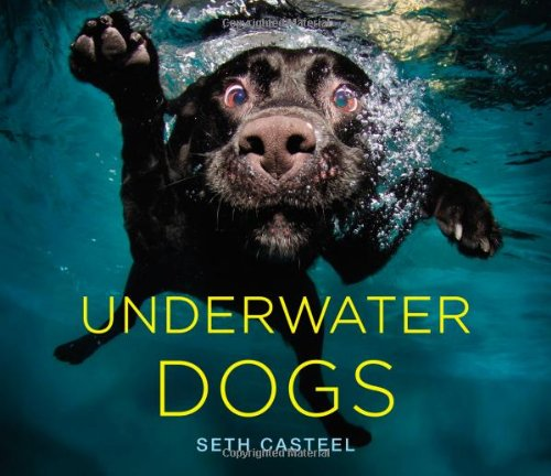 underwater dogs - gifts for dog lovers
