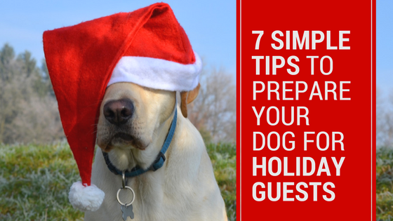 prepare your dog for holiday guests (1)