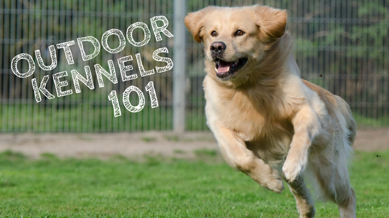 Outdoor Kennels 101