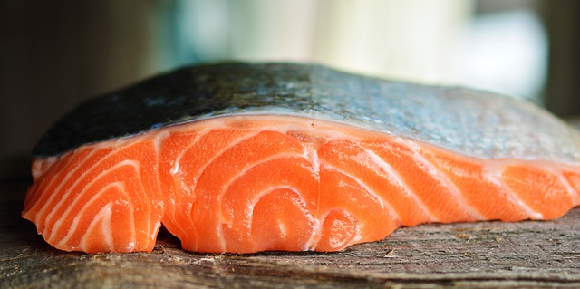 feed salmon to your dog