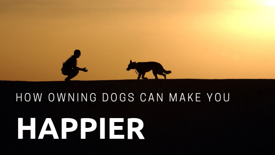 owning dogs can make you happier